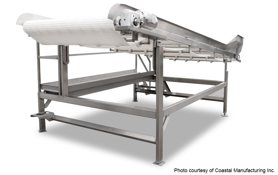 Transfer Inspection Conveyor